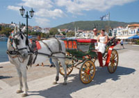 Horse-drawn carriage ride along Skiathos picturesque harbour