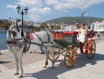 A horse-drawn carriage ride along Skiathos harbour front
